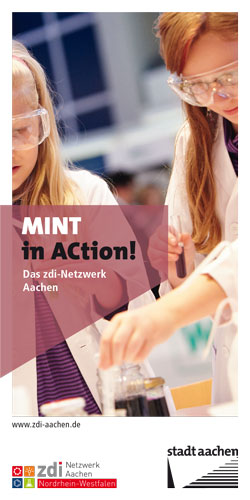 zdi Flyer MINT in ACtion